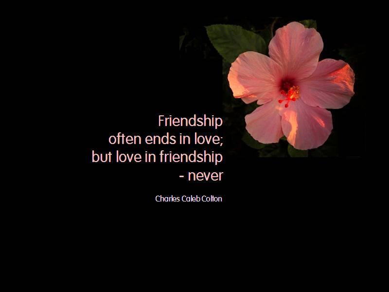 Friendship Work The Dream