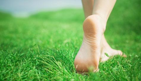 FeetBlog