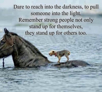 dare to reach
