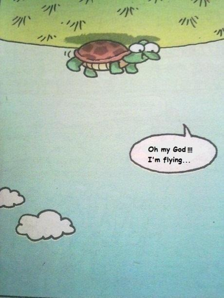 turtle-cartoon